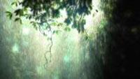 __rainy_dream